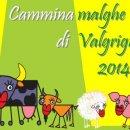 """""""Camminamalghe di Valgrigna 2014"""": la nuova proposta per l'estate"""