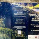 """A Bienno la mostra """"Foreste e torbiere delle montagne di Valgrigna"""""""