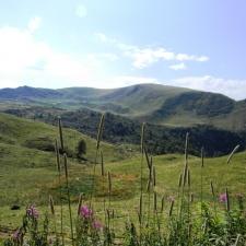 Alpeggirando in Val Grigna 2011