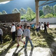 Le Classi 2° di Angone in visita all'Azieda Agricola Otelli-Zoletti