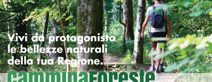 Cammina Foreste Lombardia 2017