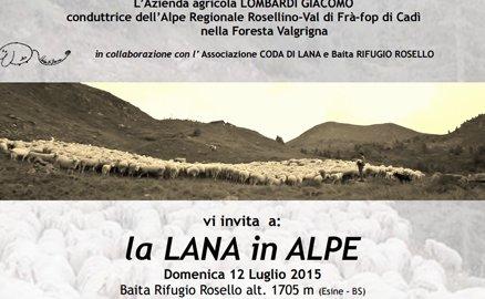 """A Rosello """"La lana in alpe"""""""