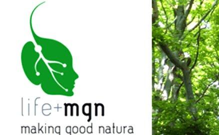 Progetto LIFE + Making Good Natura: sondaggio online