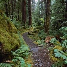 Sentiero degli Averi e dei Saperi