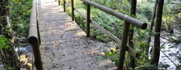Camminata sul sentiero dei carbonai