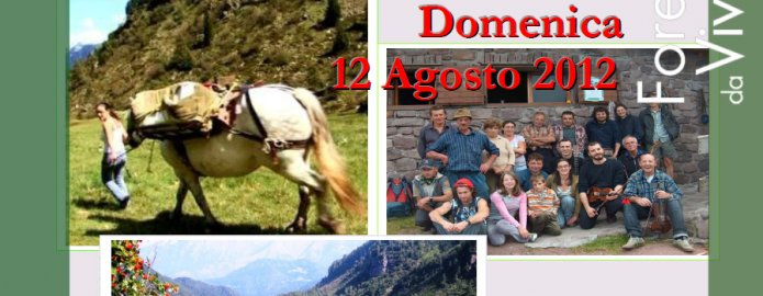 """""""Festa dell'Alpe Val Gabbia"""""""