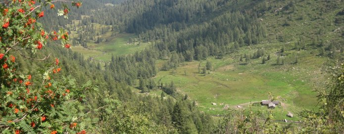 Escursione in Val Gabbia